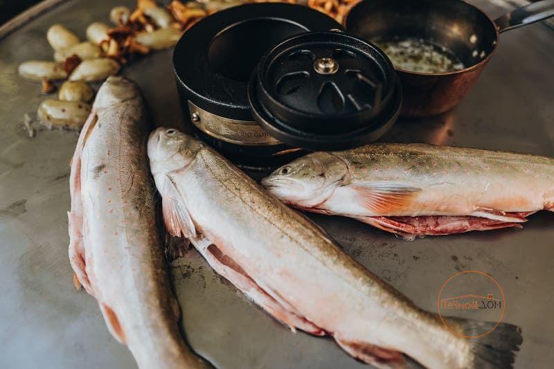фото Планча большая для гриля Classic/Basic/Le Chef